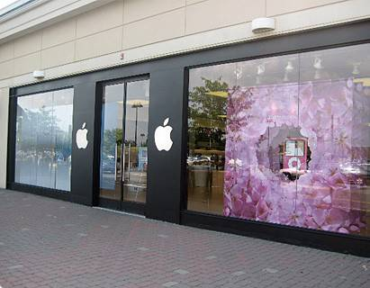 Thieves-Apple-Store