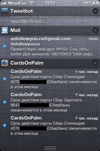 Cards On Palm 007 (2)