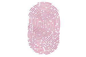 iOS 7 Touch ID