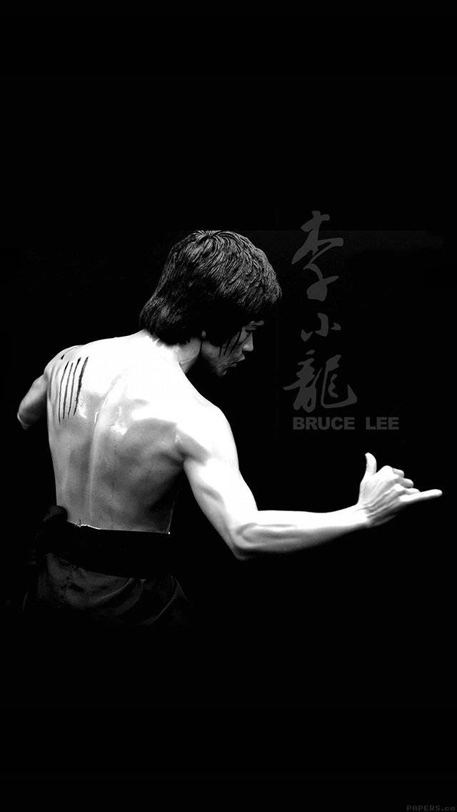 bruce-lee-sports-actor-celebrity-dark-iphone-5