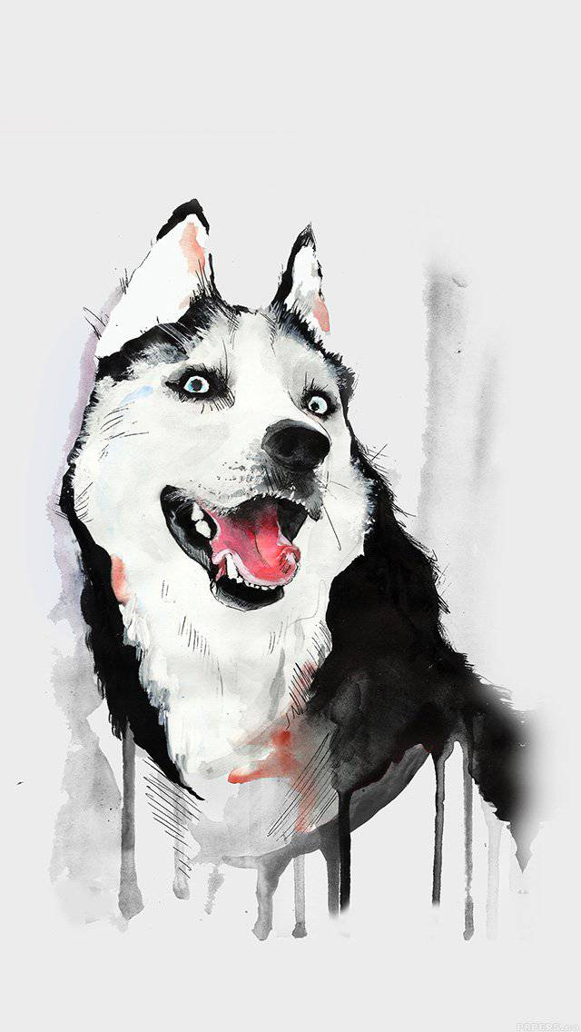 husky-animal-illust-watercolor-iphone-5